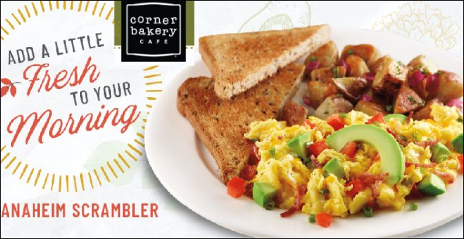 corner bakery cafe guest experience survey