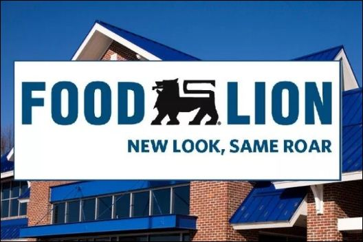 foodlion survey